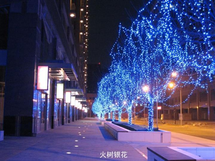 聊城市树挂灯笼 - led树木亮化_大旗灯饰