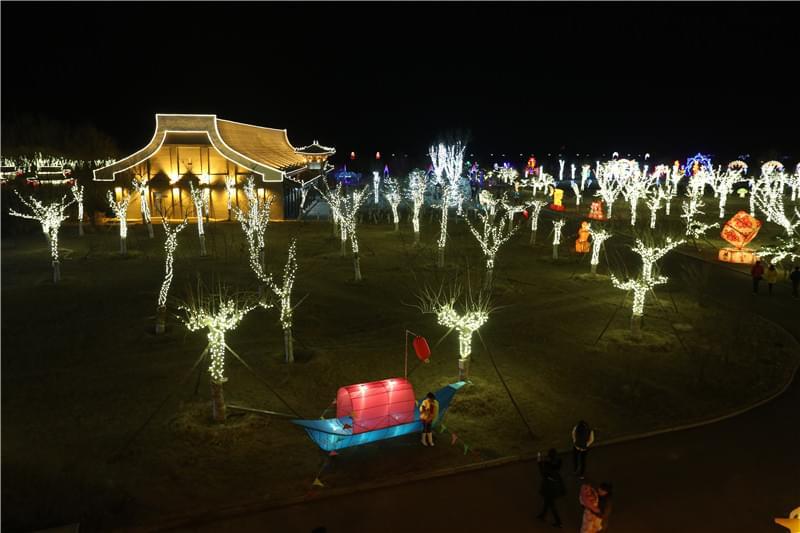 唐山菩提岛树木景观